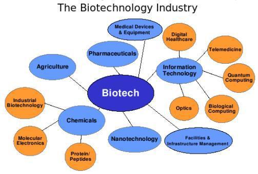 Uno schema che mostra l'industria biotech e le sue ramificazioni applicative